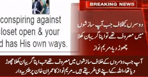 Maryam Nawaz Taunts Imran Khan on His Reply Submitted in Supreme Court