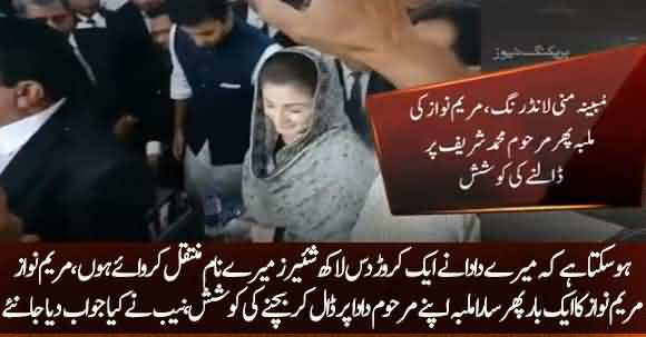 Maryam Nawaz Tried To Escape Form Corruption Cases, Involving His Grandfather