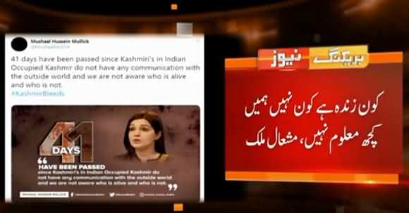 Mashaal Malik Tweets Regarding Situation Of Indian Occupied Kashmir