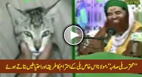 Mohtarma Billi Sahiba - Mualana Ilyas Qadri Giving Much Respect & Honour To This Special Cat