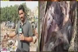 Muhasira (Karachi Mein Barish Ke Baad Haal) – 10th September 2017