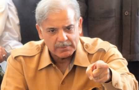 Nandipur Power Project will Start Producing Electricity in May - Shahbaz Sharif