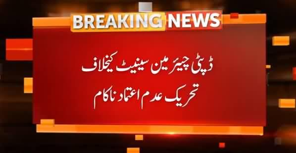 No Confidence Motion Failed Against Deputy Chairman Senate Too
