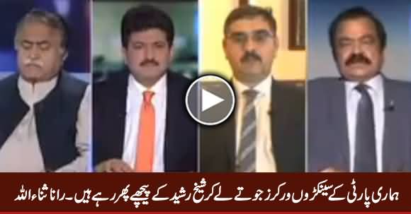 Our Party Workers Are Willing To Throw Shoe on Sheikh Rasheed - Rana Sanaullah