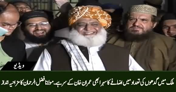 Pakistan's Donkey Population Increases, Its Credit Goes to PM Imran Khan - Fazlur Rehman's Funny Style