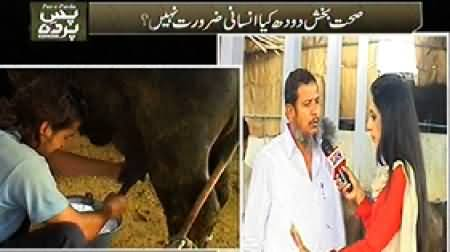 Pas e Parda (Watch What Kind of Milk We Are Using?) – 7th December 2014