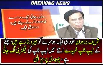 Pervaiz Elahi lashes out at Sharif brothers