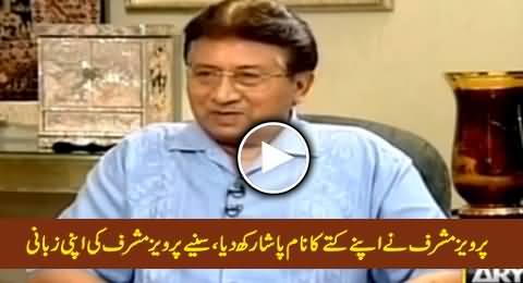 Pervez Musharraf Ne Apney Kuttay Ka Naam Pasha Rukh Diay, Sunye Musharraf Ki Zabani