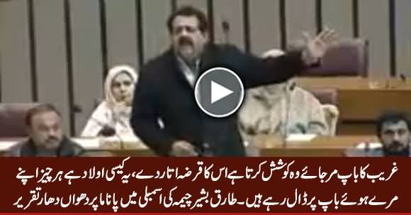 PMLQ MNA Tariq Bashir Cheema Blasting Speech on Panama Case in National Assembly