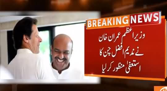 PM Imran Khan Accepts Resignation of Nadeem Afzal Chan