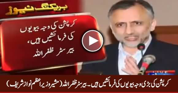 PM Nawaz Sharif's Adviser Barrister Zafarullah Tells Amazing Reason of Corruption