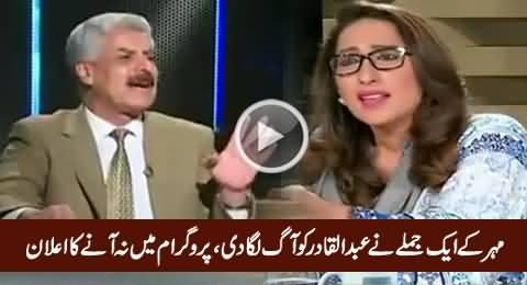 PMLN Abdul Qadir Baloch Really Got Angry on Mehar Abbasi on Her Sentence