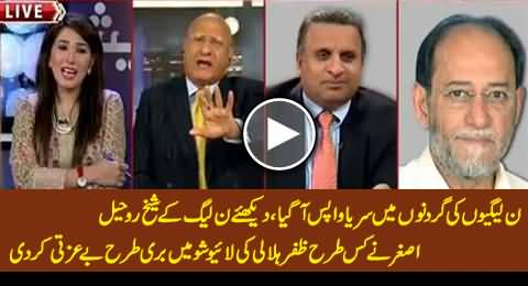 PMLN Arrogant Attitude Back: Watch How Sheikh Rohail Asghar Insulted Zafar Hilaly in Live Show