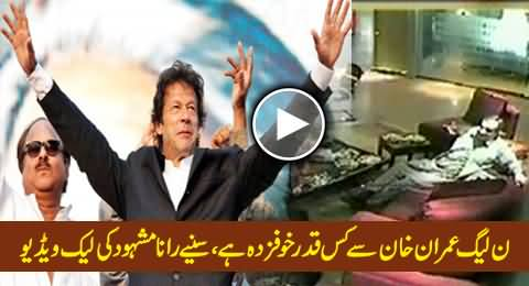 PMLN is Much Afraid of Imran Khan, Rana Mashood Telling in His Leaked Video