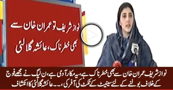 PMLN Offered Me Senate Ticket To Speak Against Army - Ayesha Gulalai
