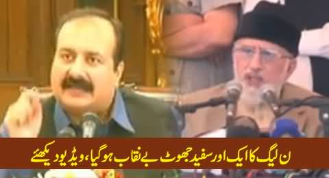 PMLN Rana Mashood Caught Red Handed Lying About Dr. Tahir ul Qadri