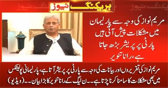 PMLN's Rana Tanveer's Astonishing Statement Against Maryam Nawaz