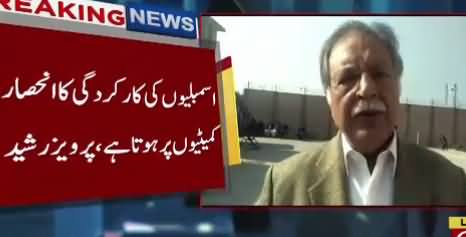 PTI Govt Not Making Committees Which Is Illegal And Unconstitutional - Pervez Rasheed