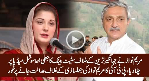 PTI To Take Legal Action Against Mariam Nawaz on Her Fraud