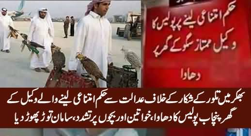 Punjab Police In Action Against Bhakkar's Lawyer Who Got Stay Order Against Houbara Hunting