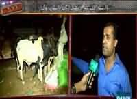 Raid (Hakumat Ki Zameen Kiraye Par De Di) – 19th September 2015