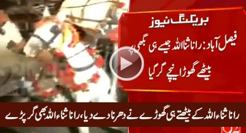 Rana Sanaullah Fell Down From Buggy Including Horse in Faisalabad