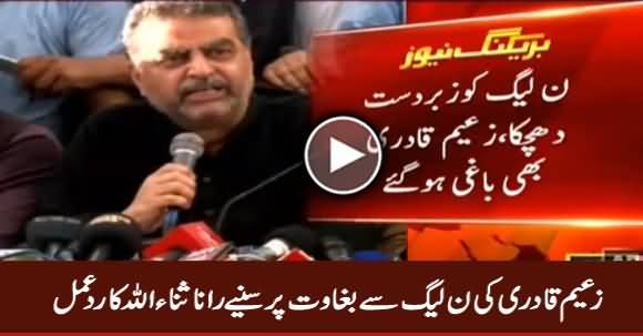 Rana Sanaullah Response on Zaeem Qadri Rebellion Against PMLN