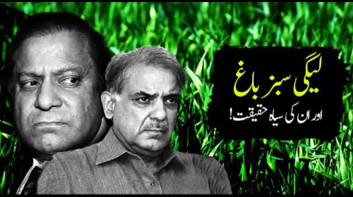Reality Behind PML(N)'s Paid Advertisement. What they show and what they  have done ?
