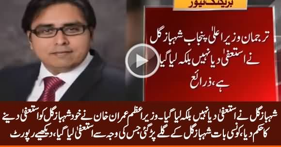 Reason Revealed Why PM Imran Khan Ordered Shahbaz Gill To Resign