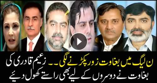 Rebellion surges with PMLN, many other members following the suit of Zaeem Qadri