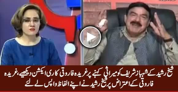 See Gharida Farooqi's Reaction When Sheikh Rasheed Called Shahbaz Sharif