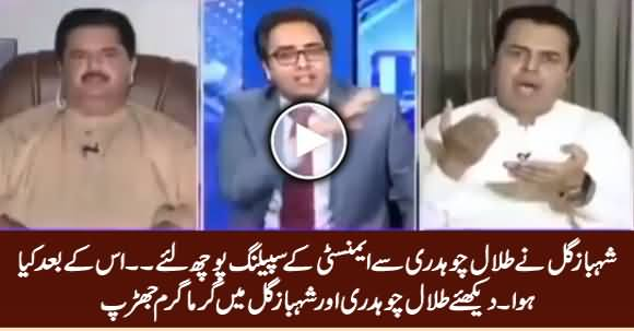 See What Happened What Shahbaz Gill Asked Spelling of Amnesty From Talal Chaudhry