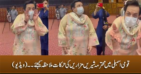 See What Shireen Mazari Is Doing In National Assembly