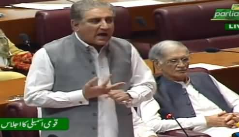 Shah Mehmood Qureshi Speech In National Assembly - 29th July 2019