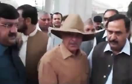 Shahbaz Sharif or Indiana Jones? Watch New Look of Khadim-e-Aala Shahbaz Sharif