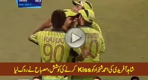 Shahid Afridi Tried to Kiss Ahmad Shahzad, Misbah-ul-Haq Stopped Him in Time