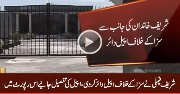 Sharif Family Challenged Avenfield Verdict in Islamabad High Court
