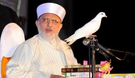 Sharif Family is Trying to Escape From Pakistan to America - Dr. Tahir ul Qadri Reveals