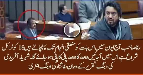 Shehryar Afridi Electrifying Speech In Assembly Challenges Rana Sanaullah To Present Himself In Trial