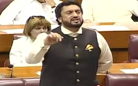 Shehryar Afridi Speech in National Assembly - 31st May 2019