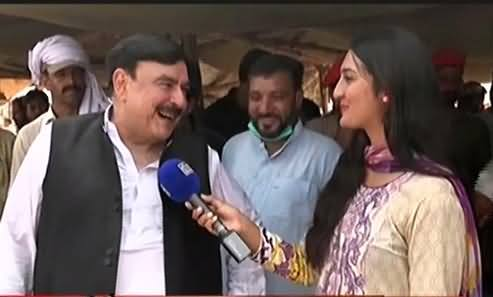 Sheikh Rasheed Purchases A Camel for Eid ul Azha, Telling His Price