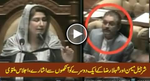 Sherjeel Memon Signals Shehla Raza During Sindh Assembly Session
