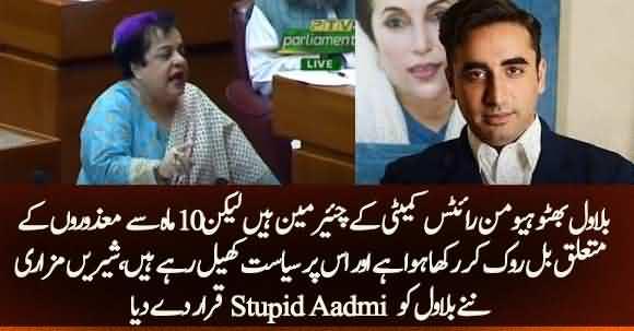 Shireen Mazari Angry On Bilawal And Calls Bilawal Bhutto