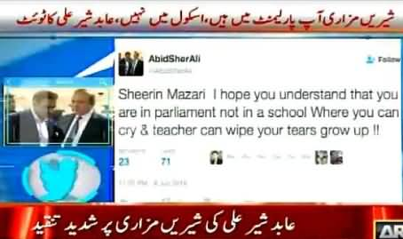 Shireen Mazari! Grow Up, You Are In Parliament, Not in School - Abid Sher Ali Tweet