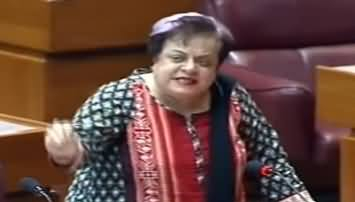 Shireen Mazari Opposes Holiday on Iqbal Day in National Assembly