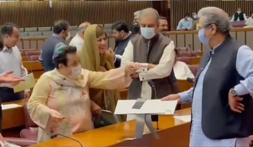 Shireen Mazari Scolds Shafqat Mehmood On Slowly Thumping The Desk in Assembly, Zartaj Gul Laughing