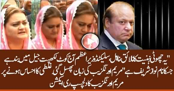 Slip Of Tongue? Maryam Aurangzeb Called Nawaz Sharif 'Selected PM'