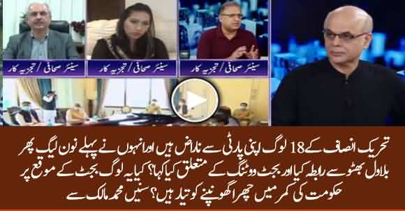 Some PTI Members Are Not Willing To Vote In Budget 2020 - Mohammad Malick Reveals