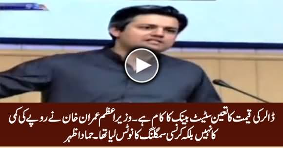 State Bank Is Responsible for Increase in Dollar's Rate - Hammad Azhar