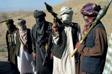 Taliban Once Again Offer The Govt To Proceed Dialogue
